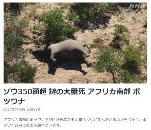 アフリカ南部でゾウ400頭以上 謎の大量死