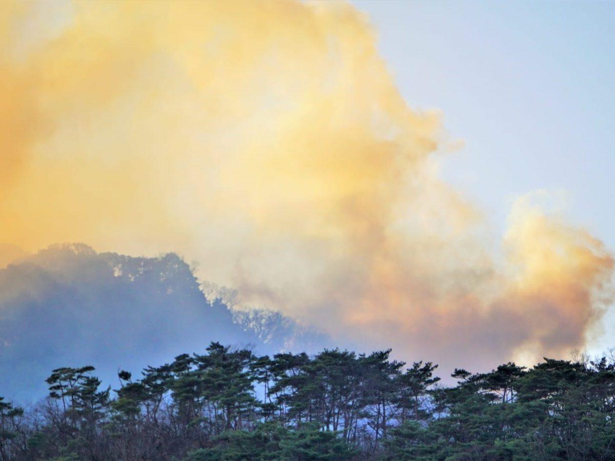 山火事で二酸化炭素発生